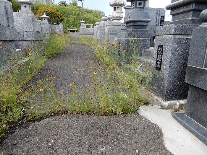墓地の通路の補修 施工前